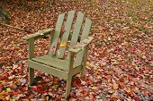 Adirondack chair amid leaves