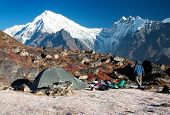 langtang peak and camping
