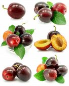 Collection Of Plum Fruits With Green Leafs Isolated