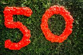 Number Fifty written on a bush