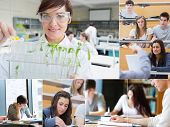 Collage of teacher and students at the university