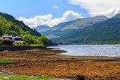 picture of bute  - Stunning scenery at Loch Long Argyll and Bute Scotland - JPG
