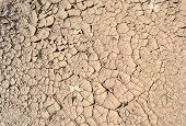 Drought, Grunge Dry Ground, Stress Environment