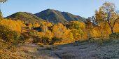 Autumn panorama
