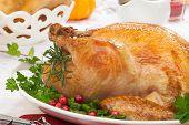 Fall Festival Roast Turkey