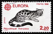 Postage Stamp France 1986 Civet Cat, Viverridae