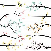 foto of spring-weather  - Vector Collection of Tree Branch Silhouettes with Leaves - JPG