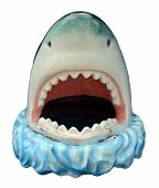 Novelty Plastic Shark