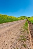 stock photo of golan-heights  - Dirt Road Between Field in Golan Heights Early Spring - JPG
