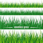 Set Of Seamless Grass
