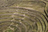 Peru, Moray, Ancient Inca Circular Terraces. Probable There Is The Incas Laboratory Of Agriculture