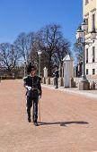 Guardsman Of The Royal Palace