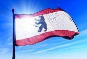 Berlin flag waving on the wind
