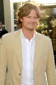 Steve Zahn at the Los Angeles Premiere of 'A Perfect Getaway'. Arclight Cinerama Dome, Hollywood, CA