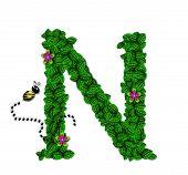Alphabet Bee Buzz N
