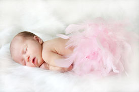 picture of sleeping baby  - Infant sleeping on a soft white blanket with pink feathers over her bottom half - JPG