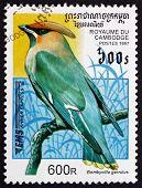 Postage Stamp Cambodia 1997 Bohemian Waxwing, Bird