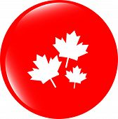 Maple Leaf Icon On Web Button