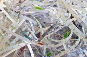Paper Shredding