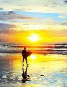 ������, ������: Bali Surfer
