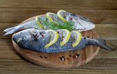 Fresh Dorado on a wooden background