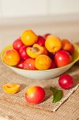 Cherry-plums And Apricots