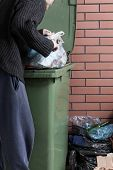 image of dumpster  - Vertical view of a hungry homeless man looking for food in a dumpster - JPG