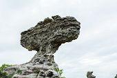 Natural Stone Sculptures