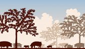 Editable vector illustration of free-range pigs feeding under fruit trees with all figures as separa