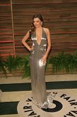LOS ANGELES - MAR 2:  Miranda Kerr at the 2014 Vanity Fair Oscar Party at the Sunset Boulevard on March 2, 2014 in West Hollywood, CA