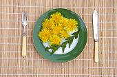 Dandelion Flowers And Leaves Healthy Spring Time Natural Vegetarian Food