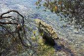 Flat green stone looks out of Aegean Sea.