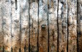picture of wainscoting  - close up shot of wooden fence as background - JPG