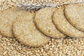 Cookies From Whole Grain Wheat