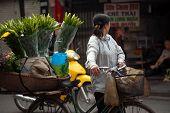 Flowers Street Vendor At Hanoi City,Vietnam.