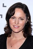 LOS ANGELES - DEC 5:  Jorja Fox at the 2014 IDA Documentary Awards at the Paramount Studios on December 5, 2014 in Los Angeles, CA