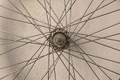 Bicycle Spoke Wheel