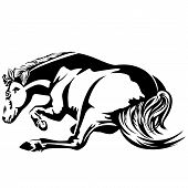 pic of wallow  - Horse wallow Black and white drawing - JPG