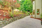 Backyard Leveled Landscape Design