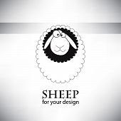 Sheep for your design