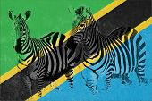 Flag Of Tanzania With Silhouette Of Two Zebras