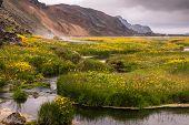 Hot Creek In The Valley Landmannalaugar, Iceland