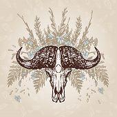 buffalo Skull Vintage Aged Plumage