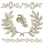stock photo of acorn  - Hand drawn beige oak wreath and branch dividers with acorns with woodcut shading isolated on white background - JPG