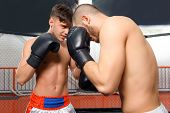 picture of boxing ring  - True battle - JPG
