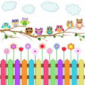 foto of owls  - A set of 9 cute owls on a branch with a fence - JPG