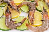 pic of tiger prawn  - Raw tiger shrimps on plate - JPG