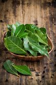 stock photo of bay leaf  - Fresh bay leaves in a wooden bowl on a rustic wooden background - JPG