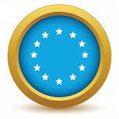 picture of union  - Gold European Union icon on a white background - JPG