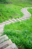 Winding Footpath Steps Through Grass